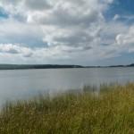 Sarıkum Gölü-2